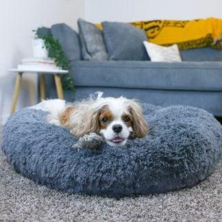 Cozy Calming Bed
