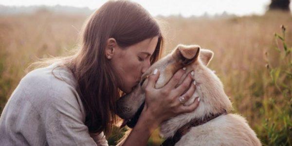 Do Dogs Have A Sixth Sense?