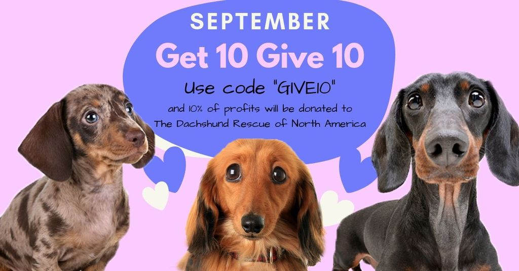Help a Dachshund in Need This Month