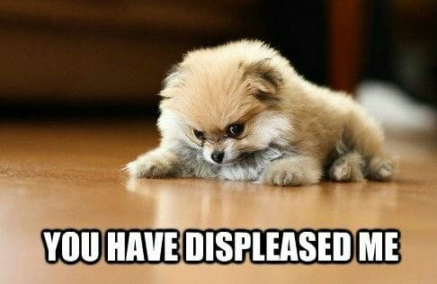 Angry Dog Meme - You have displeased me