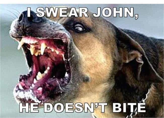 Angry Dog Meme - I swear John, he doesn't bite