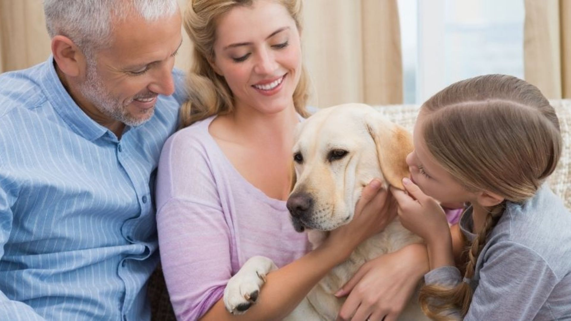 The Complete Collection of Vet-Recommended Resources for Pet Parents