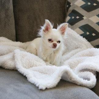 Cozy Calming Blanket