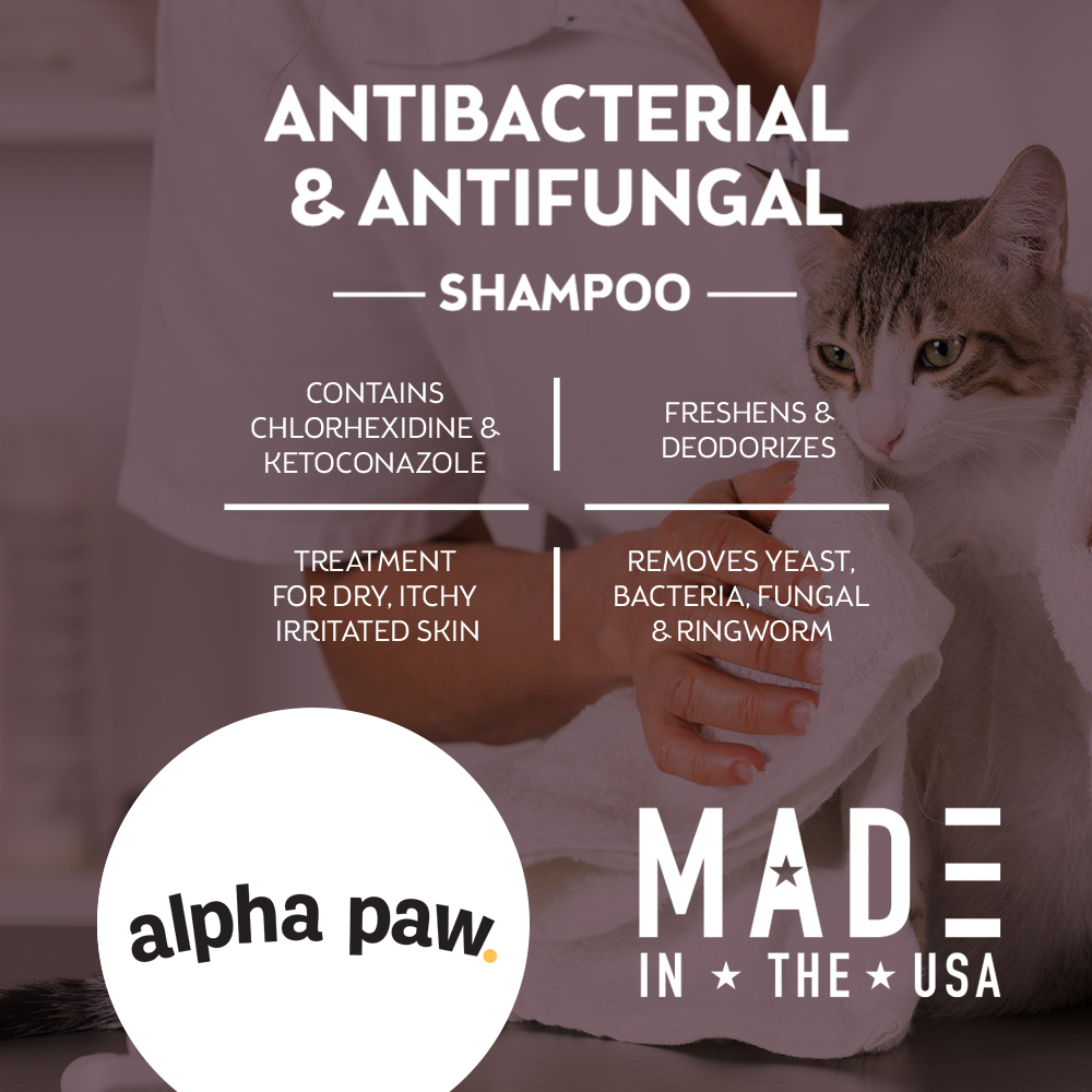 Anti Bacterial & Anti Fungal Shampoo