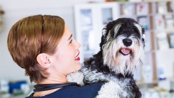 Dog Cancer: Signs, Symptoms and Treatment