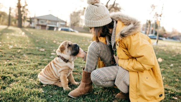 The Complete Guide to Dog Walking