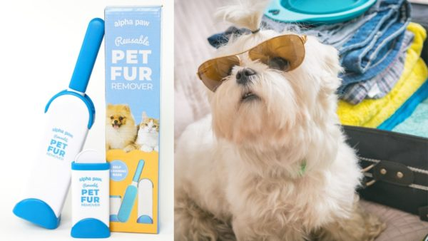 Alpha Paw Tips: 5 Ways to Use the Magic Fur Remover